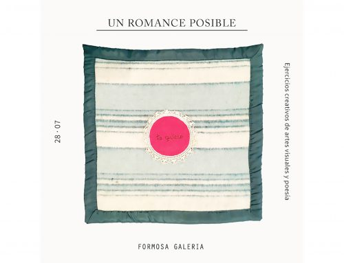 Felicitas Novillo en Formosa Galería