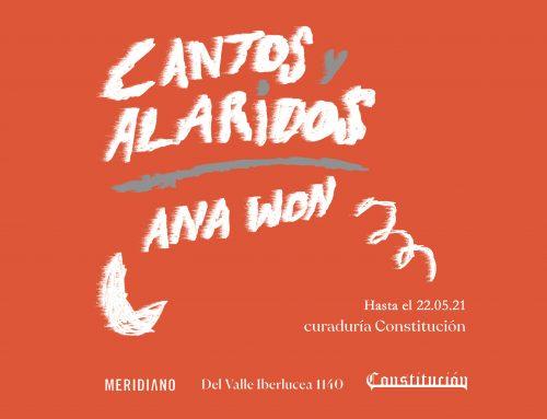 Ana Won en Galería Constitución